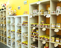 Het bijtje  - Berchem - Onze winkel
